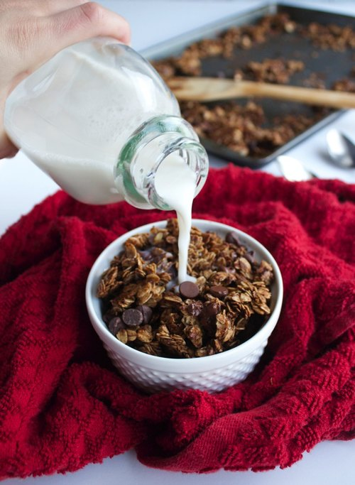 Chocolate-Gingerbread-Granola-6